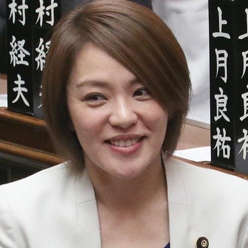今井絵理子の政務官や参院議員期間の年収